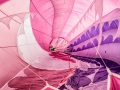 Balloon-pink-inside