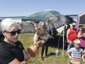 Cols-zoo-hawk